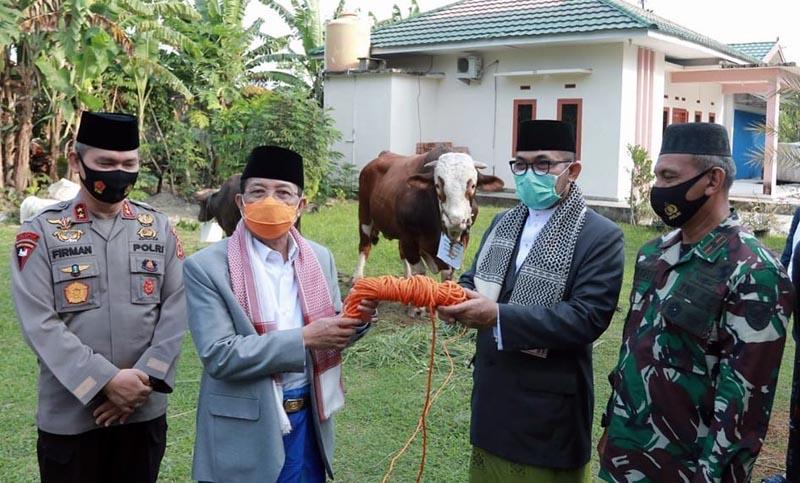 FOTO : Gubernur Jambi H. Fachrori Umar Menyerahkan Kurban Keluarga Besar 1 ekor sapi, yang diserahkan kepada Ketua Dewan Pengurus Masjid Al-Falah Jambi, Jumat (31/07/20).