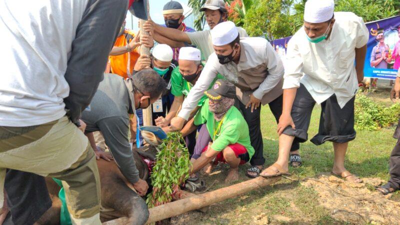 FOTO : Kapolres Tanjab Barat AKBP Guntur Saputro, SIK, MH Saat Turut Serta Pemotongan Hewan Qurban di Mapolres, Jumat (31/07/20).