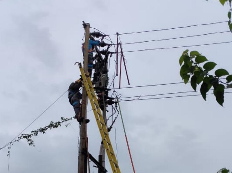 FOTO : Petugas PLN Melakukan Upaya Perbaikan di Titik Gangguan