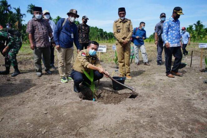 Gubernur Jambi, Al Haris Saat Melakukan Penanaman Pohon Pinang di Sadu, Tanjab Timur (15/07/21).
