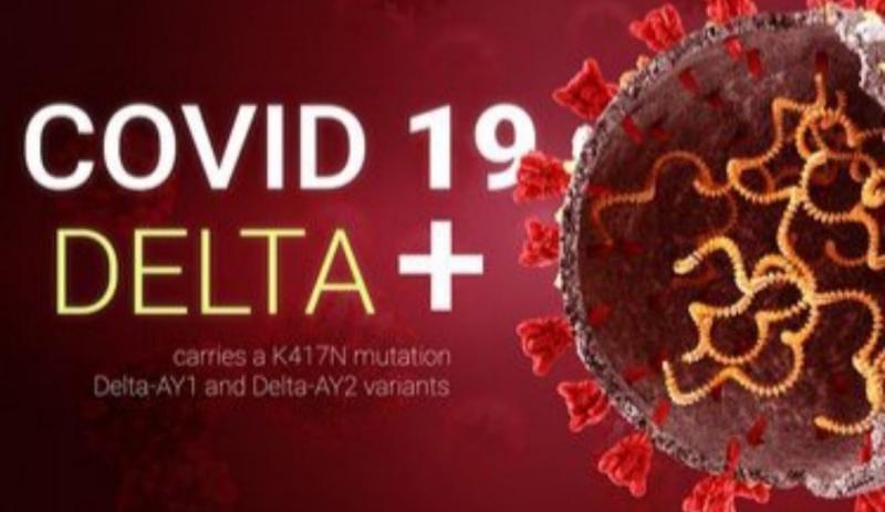 COVID-19 Varian AY.1 'Delta Plus' Dikabarkan Sudah Terdeteksi di Jambi/Ilustrasi