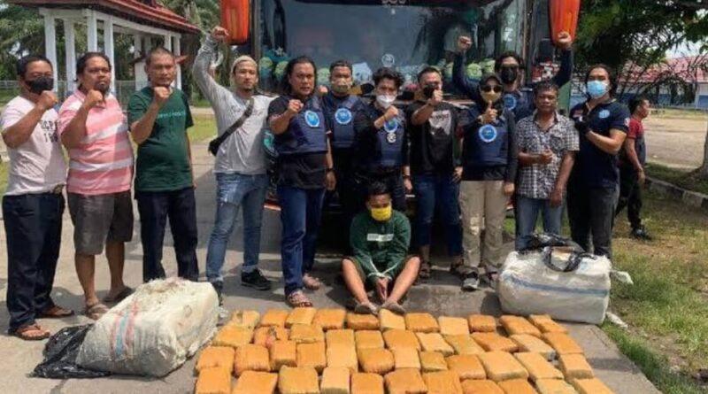 Penyelundupan 45 Kg Ganja Kering dari Aceh Digagalkan BNN Jambi : FOTO : detik.news