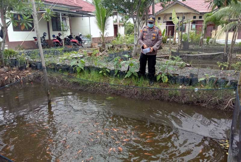 FOTO : Kapolsek Tungkal Ilir, IPTU Agus A Purba, SH, MH Ketima Memberi Makan Ikan