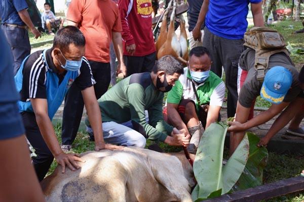Penyembelihan Hewan Qurban 8 ekor sapi dan 11 ekor kambing di Makorem 042/Gapu, Selasa (20/07/21). FOTO : PENREM042GAPU