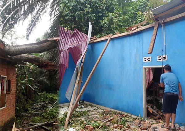 Tampak Atap Rumah Warga di RT 06 Desa Sekernan, Kecamatan Sekernan Kabupaten Muaro Jambi Rusak Karena Tertimpa Pohon Durian, Rabu (13/10/21). FOTO : Noval