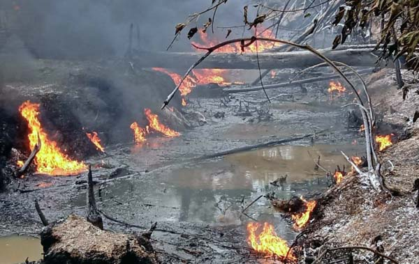 Lokasi penampungan Minyak Ilegal yang Terbakar di kawasan konsesi PT Agronusa Alam Sejahtera (PT AAS) di Kecamatan Bajubang, Batanghari, Sabtu (18/9/21). FOTO : Metrojambi